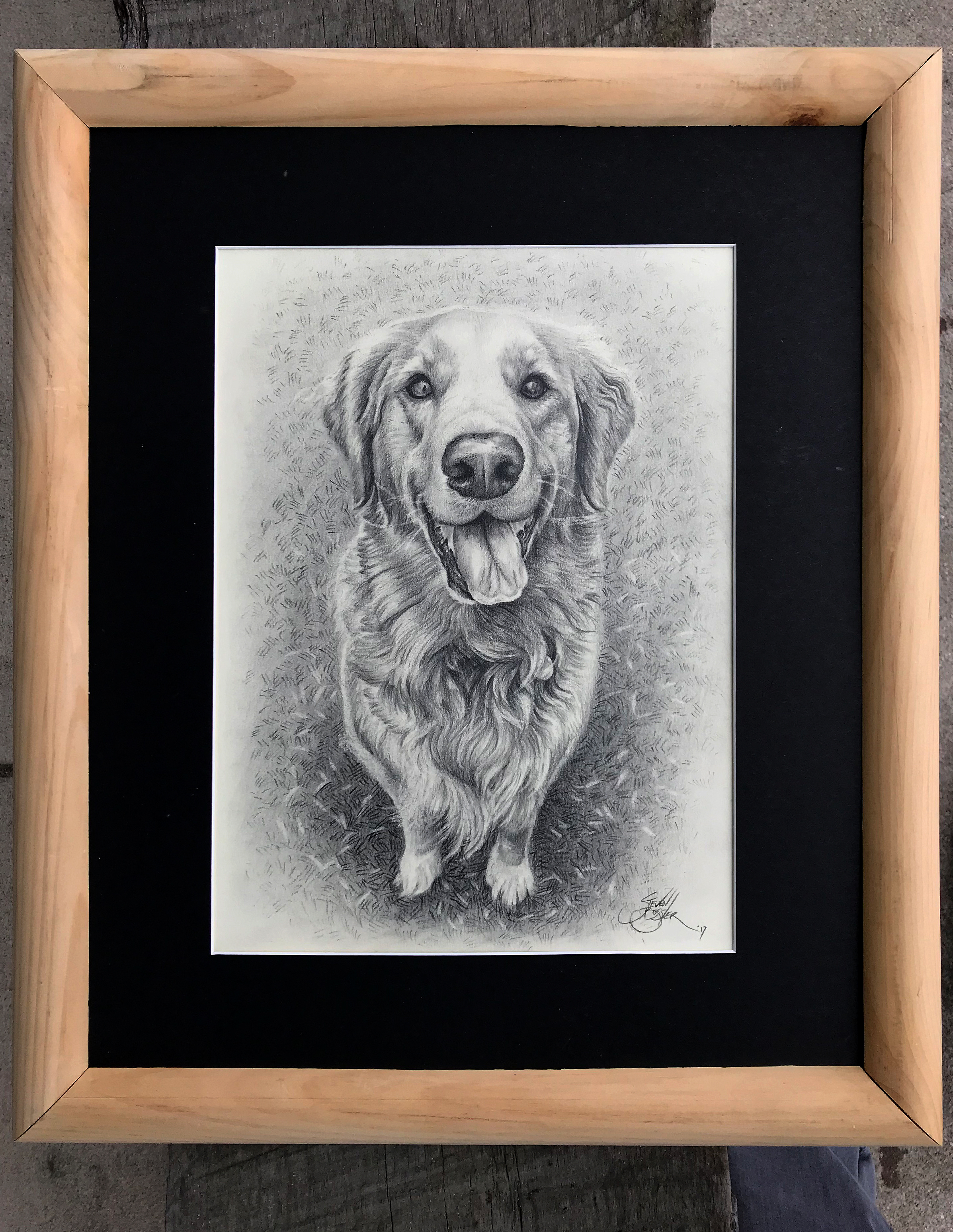 Another commissioned dog drawing. There will be few more of these on the way.