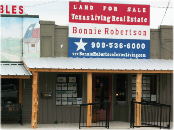 Texas Living Real Estate Office - Street View