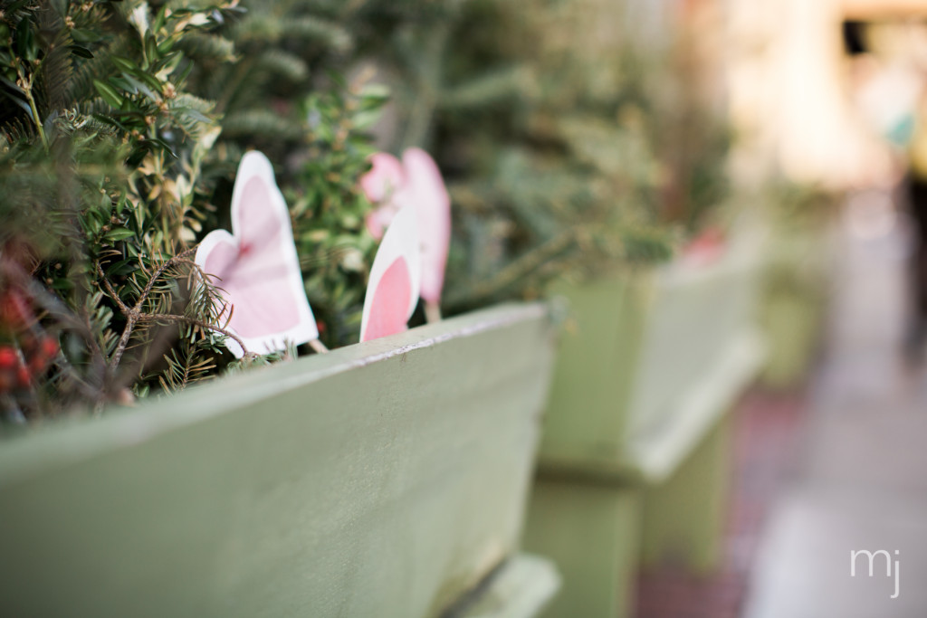 salem-winter-engagement-session-christmas-lights-snow-boston-wedding-photographer-photo-7826