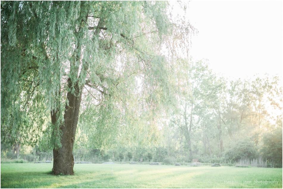 Meredith_Jane_Photography_Film_Adirondacks_highland_forest_engagement_Wedding_Photographer_photo_0532