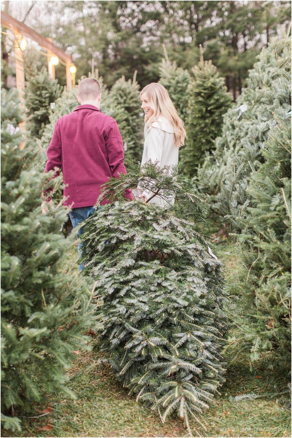 mistletoe_holiday_tree_farm_christmas_boston_massachusetts_engagement_fall_cape_cod_wedding_photographer_Meredith_Jane_Photography_photo_1015.jpg