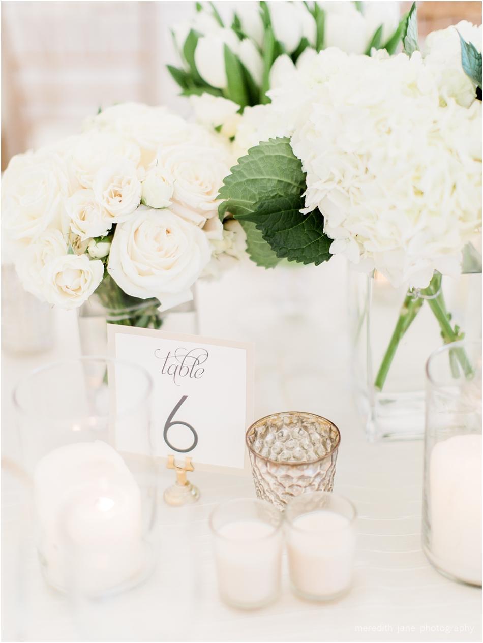 woods_hole_private_estate_tented_boston_engagement_massachusetts_cape_cod_new_england_wedding_photographer_Meredith_Jane_Photography_photo_1166.jpg