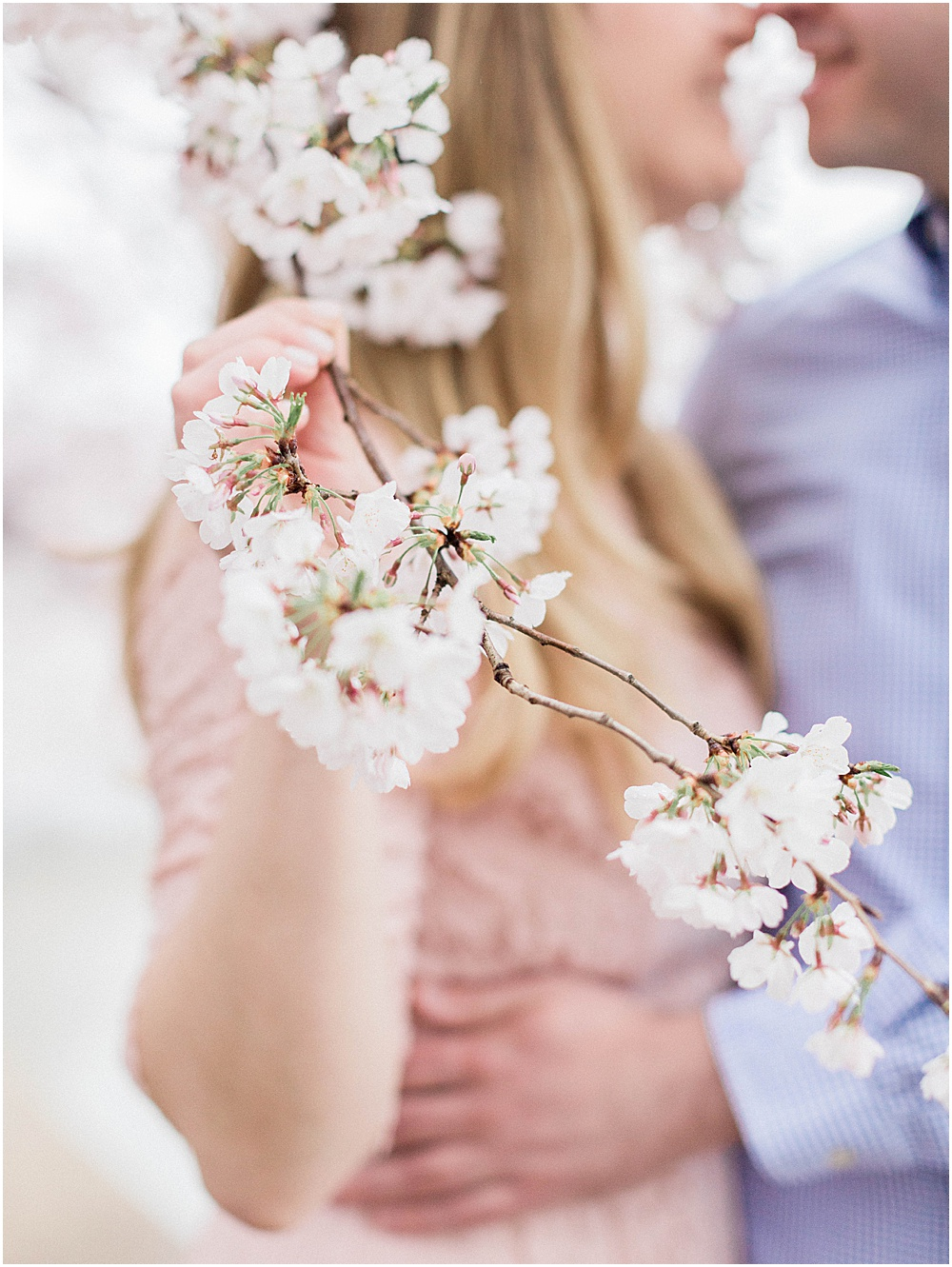 Holding a Cherry Blossom during DC Cherry Blossom Engagement