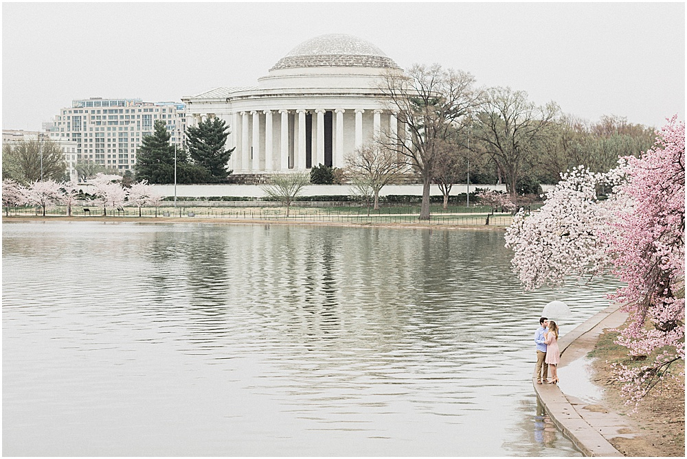 DC Cherry Blossom Engagement overlooking the Jefferson Memorial