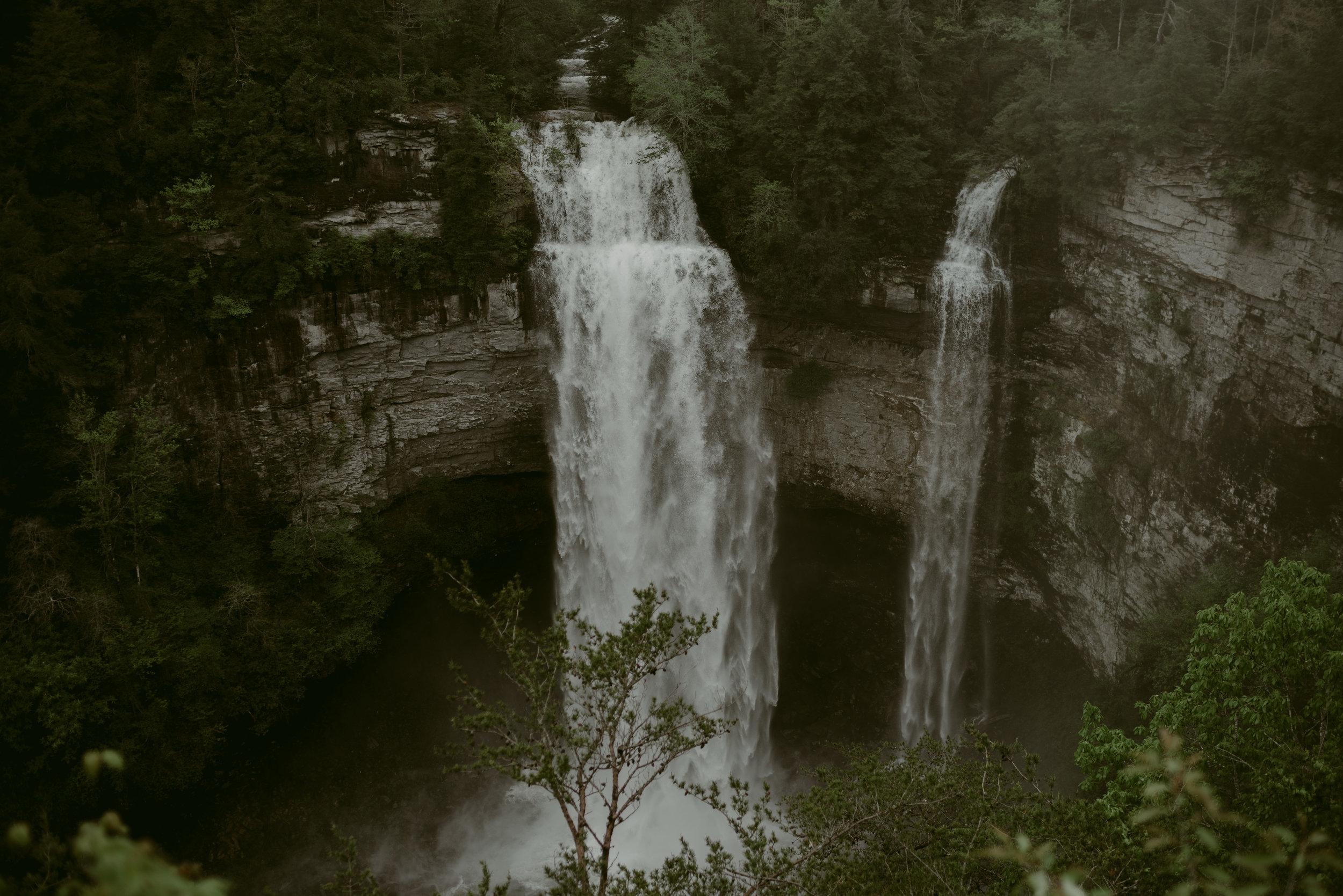 Forest + Falls '17-1.jpg