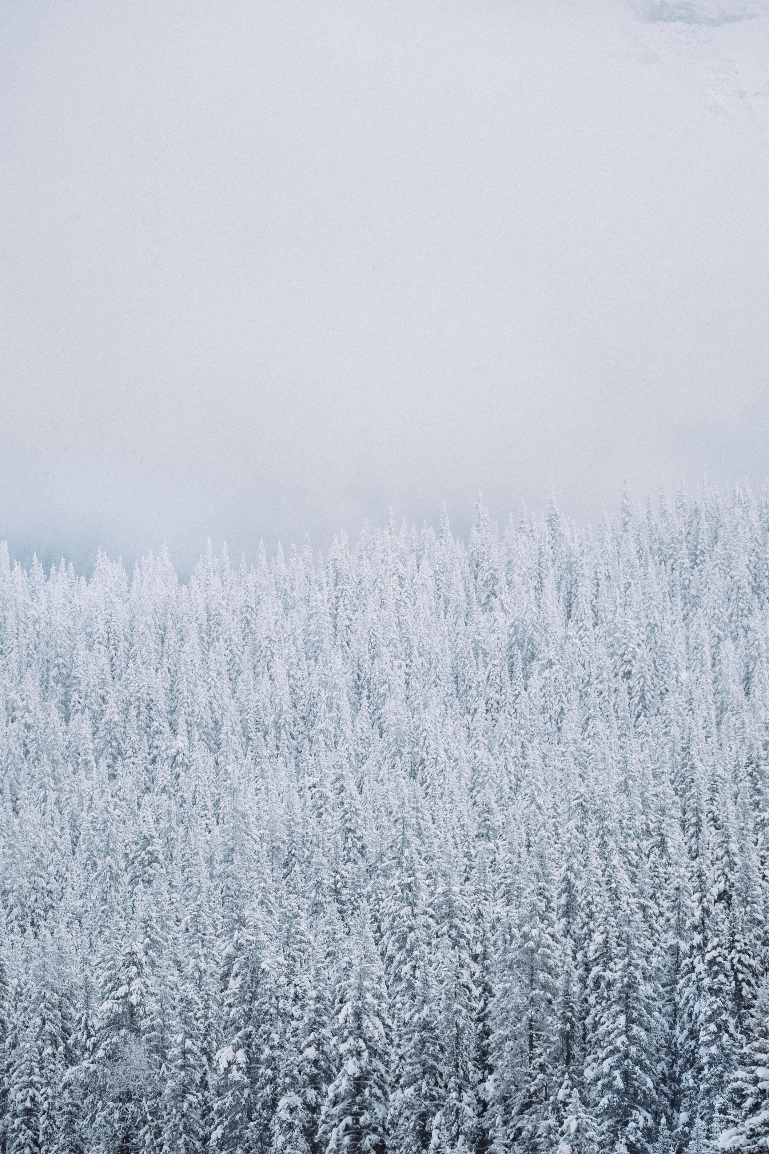 Banff_Canada-27.jpg