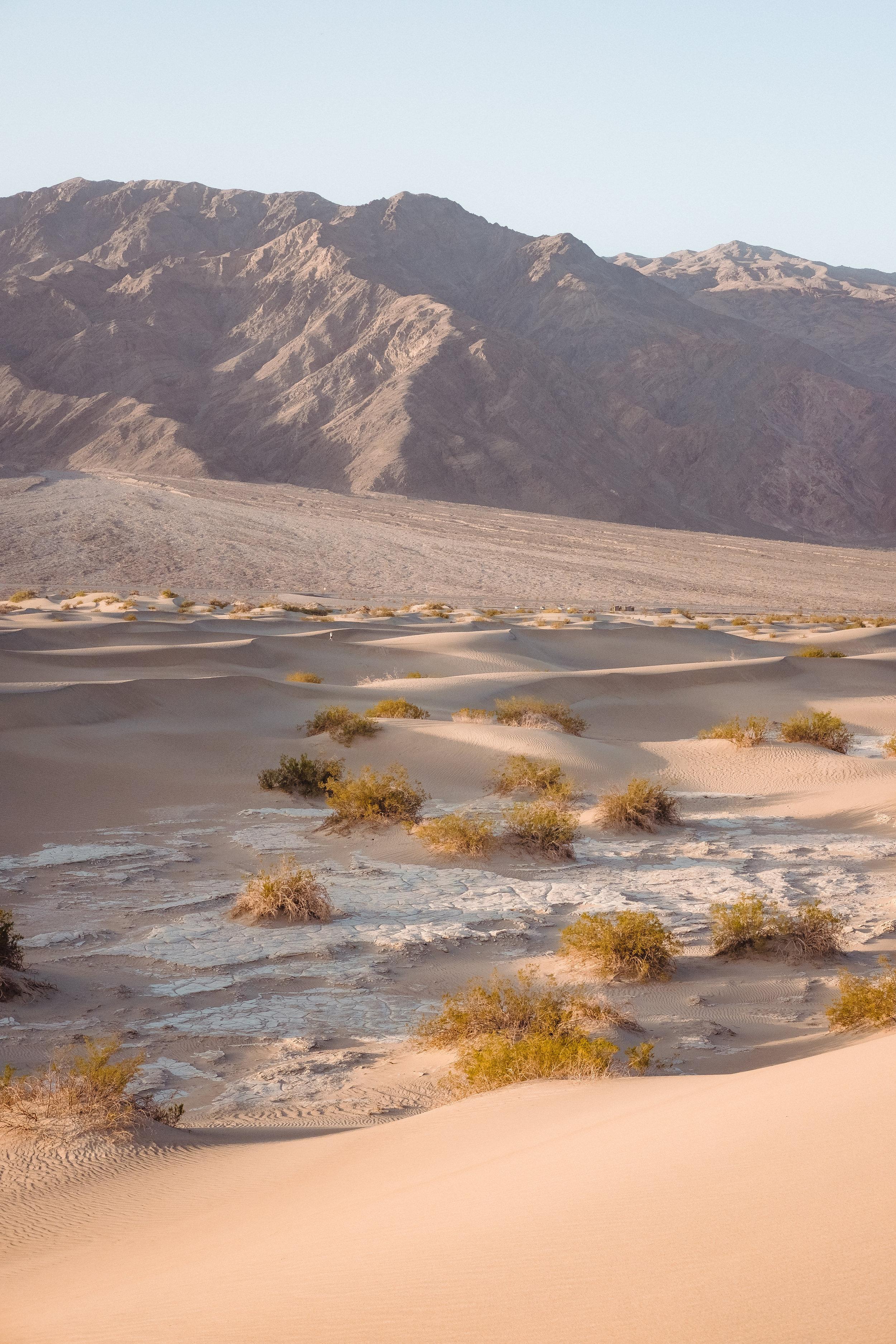 Death_Valley-14.jpg