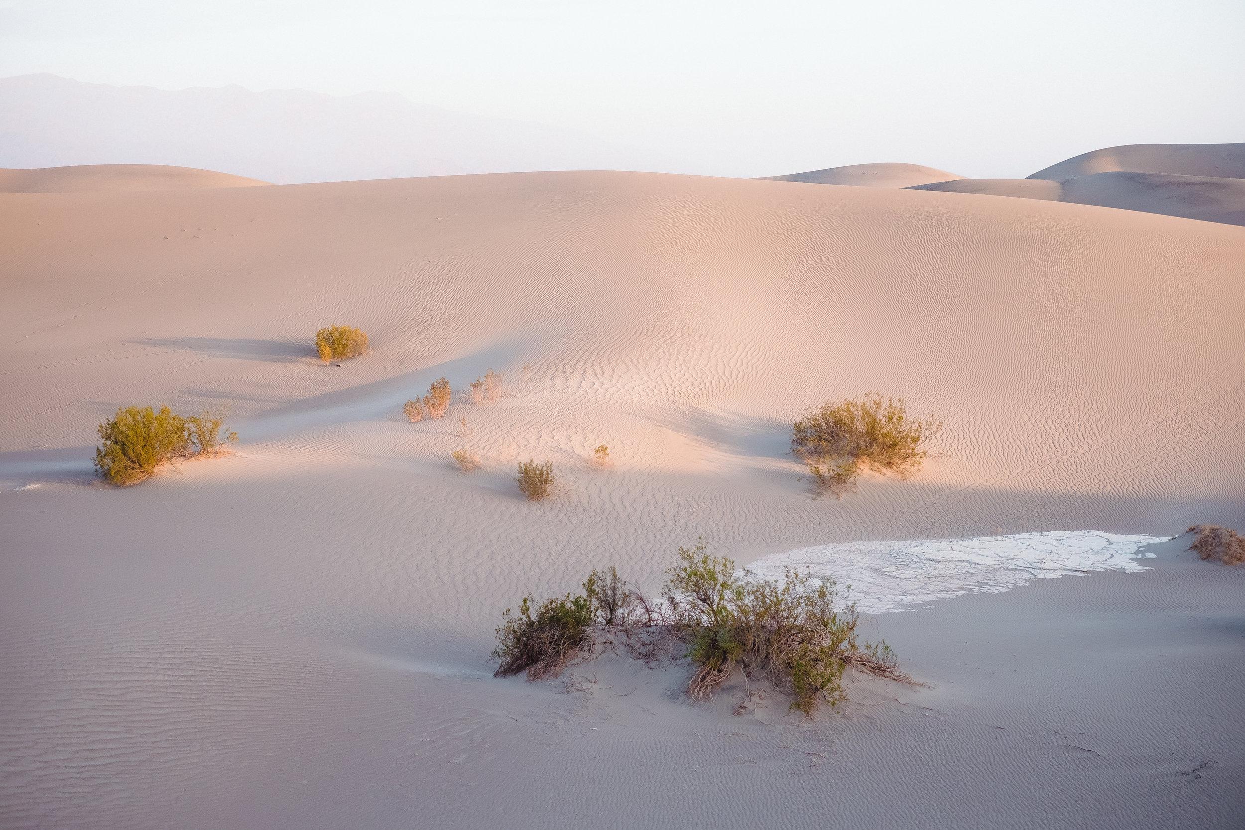 Death_Valley-9.jpg