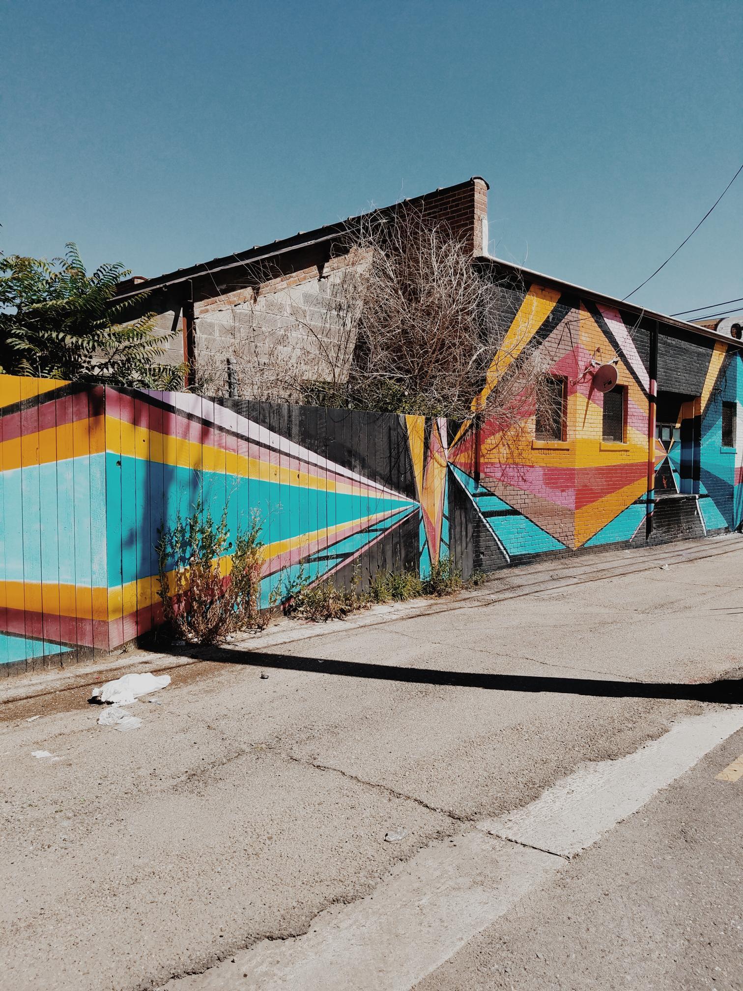 Rino Murals