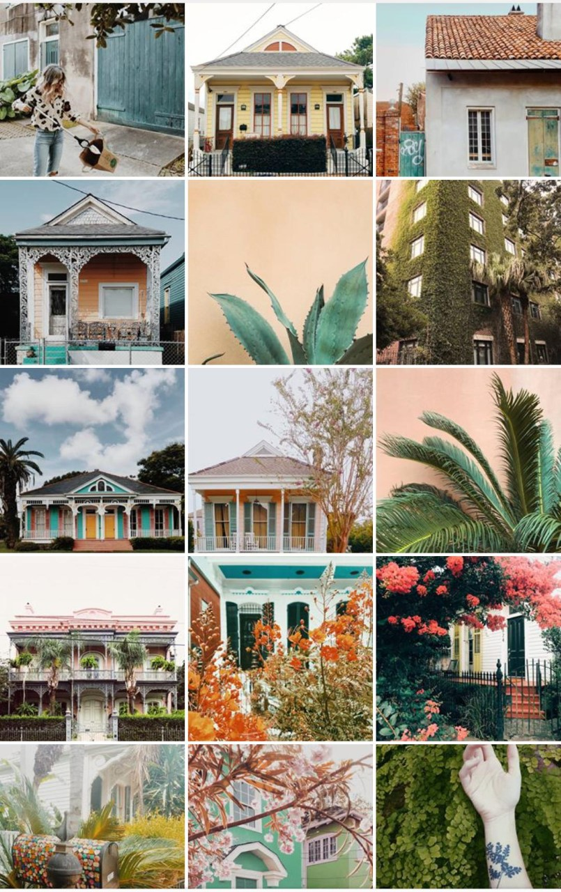 The beauty and colors of New Orleans