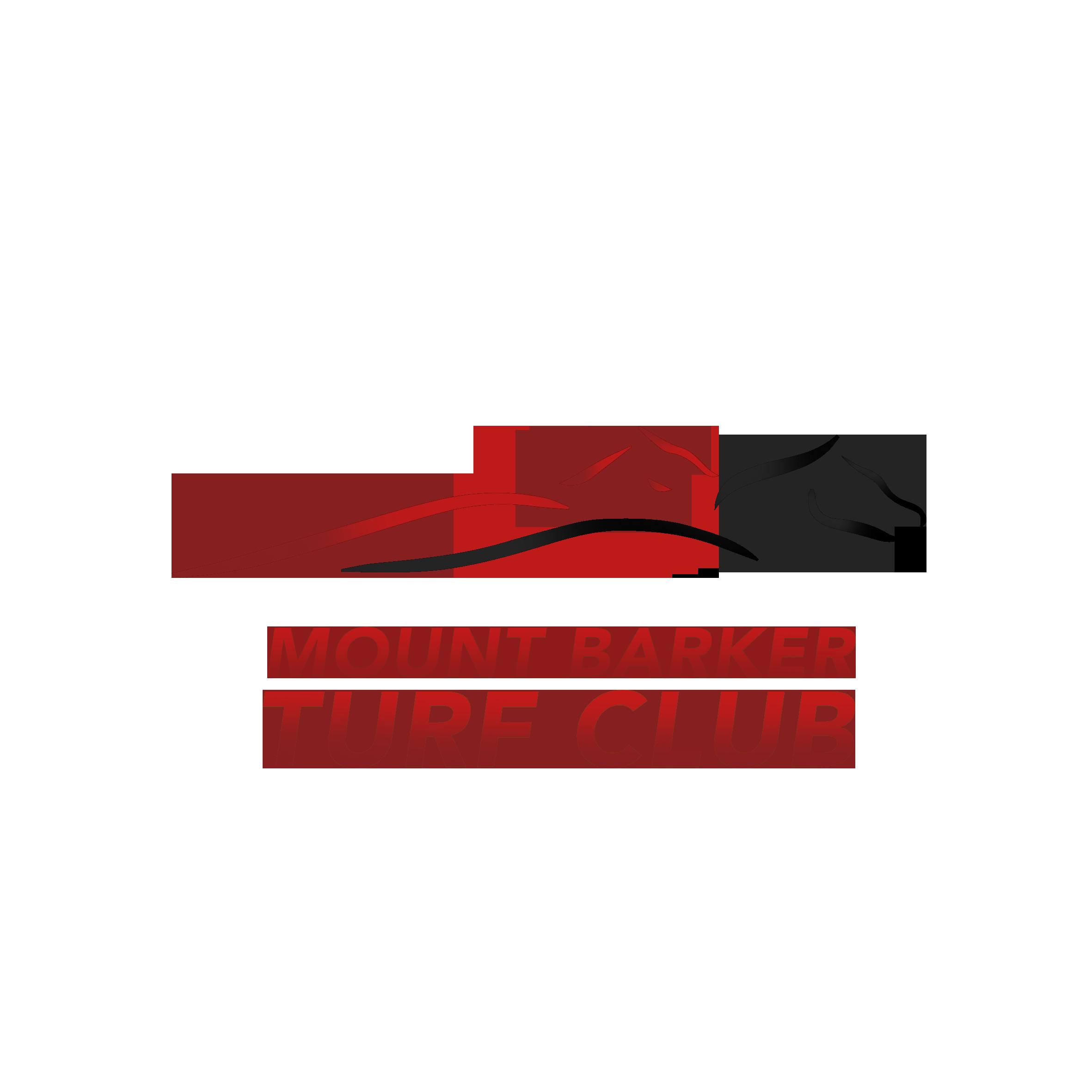 Mt Barker Logo.png