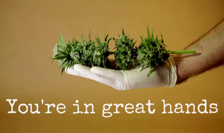cannabis trim specialists oregon