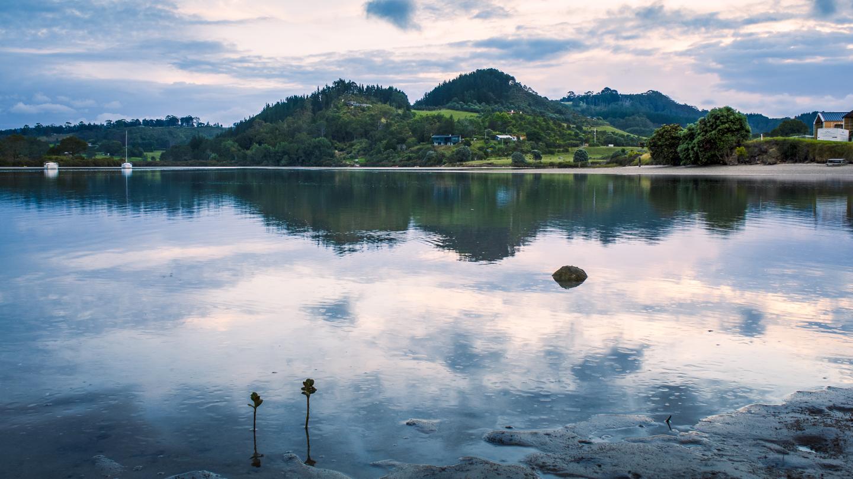 CRH_2018_NZ_D3_THE_COROMANDEL_4048.jpg