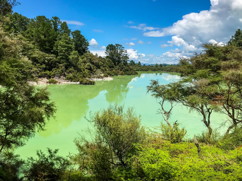 CRH_2018_NZ-DAY_08-FROM_WONDERLAND_TO_TAUPO_-2.jpg