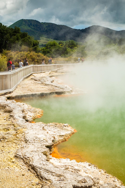 CRH_2018_NZ-DAY_08-FROM_WONDERLAND_TO_TAUPO_4306.jpg