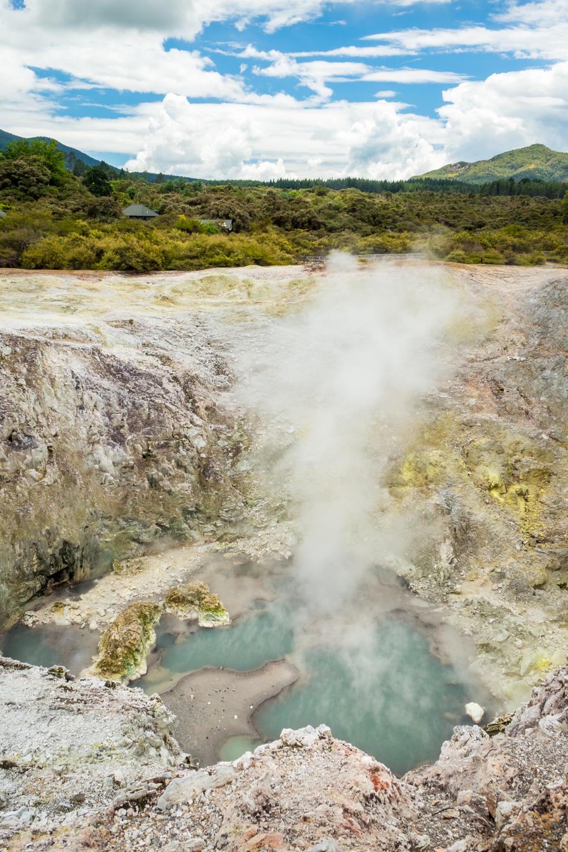 CRH_2018_NZ-DAY_08-FROM_WONDERLAND_TO_TAUPO_4315.jpg