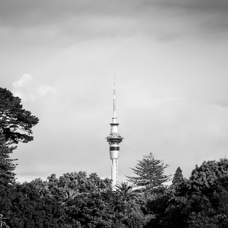 CRH_2018_NZ_LAST_DAYS_AUCKLAND_4528.jpg