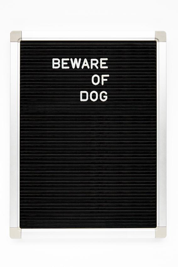 beware of dog copy.jpg