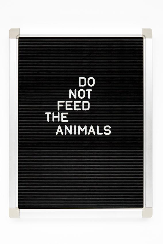 do not feed the animals copy.jpg