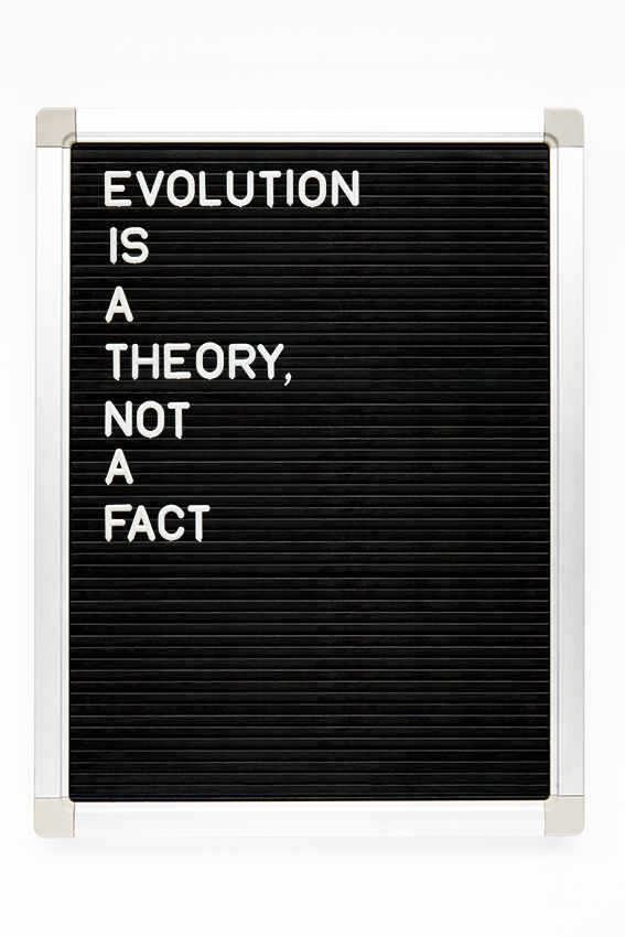 evolution is a theory not a fact copy.jpg