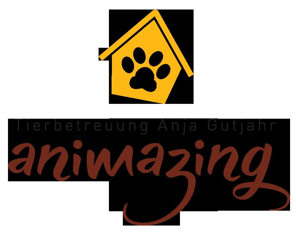 Logo Animazing transparent Web.png