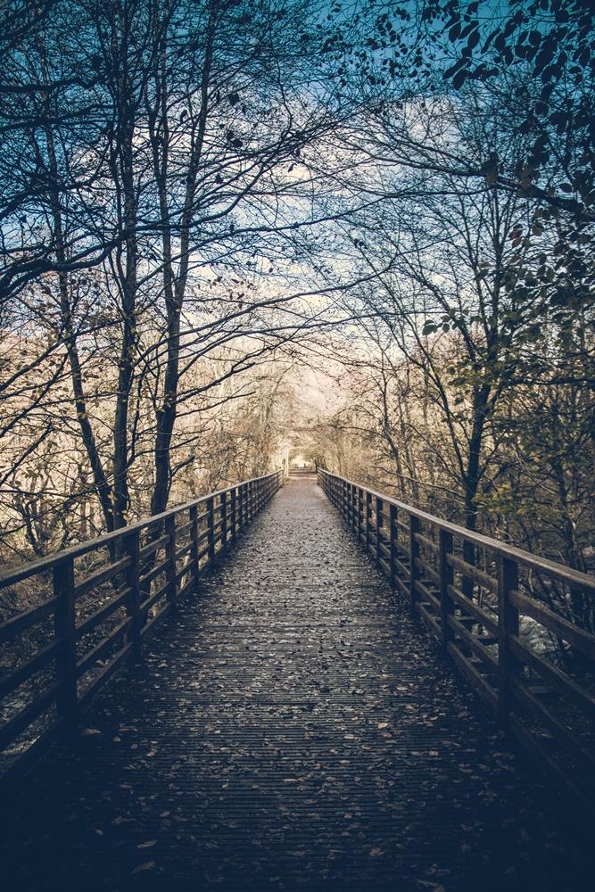 lakes bridge (1 of 1)small.jpg