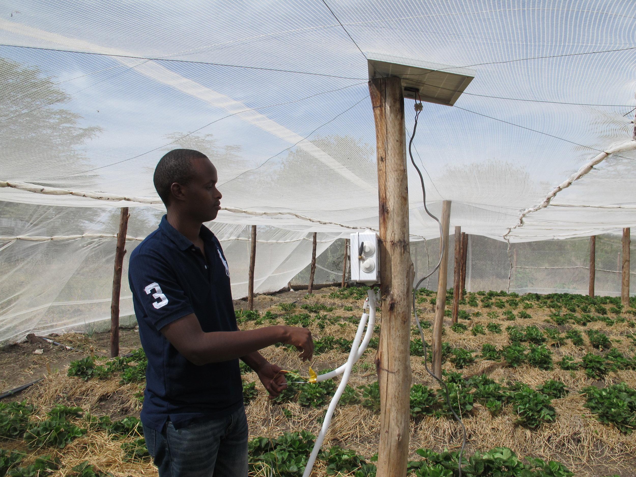 Illuminum Greenhouses co-founder Brian Bett installing a farm automation system.