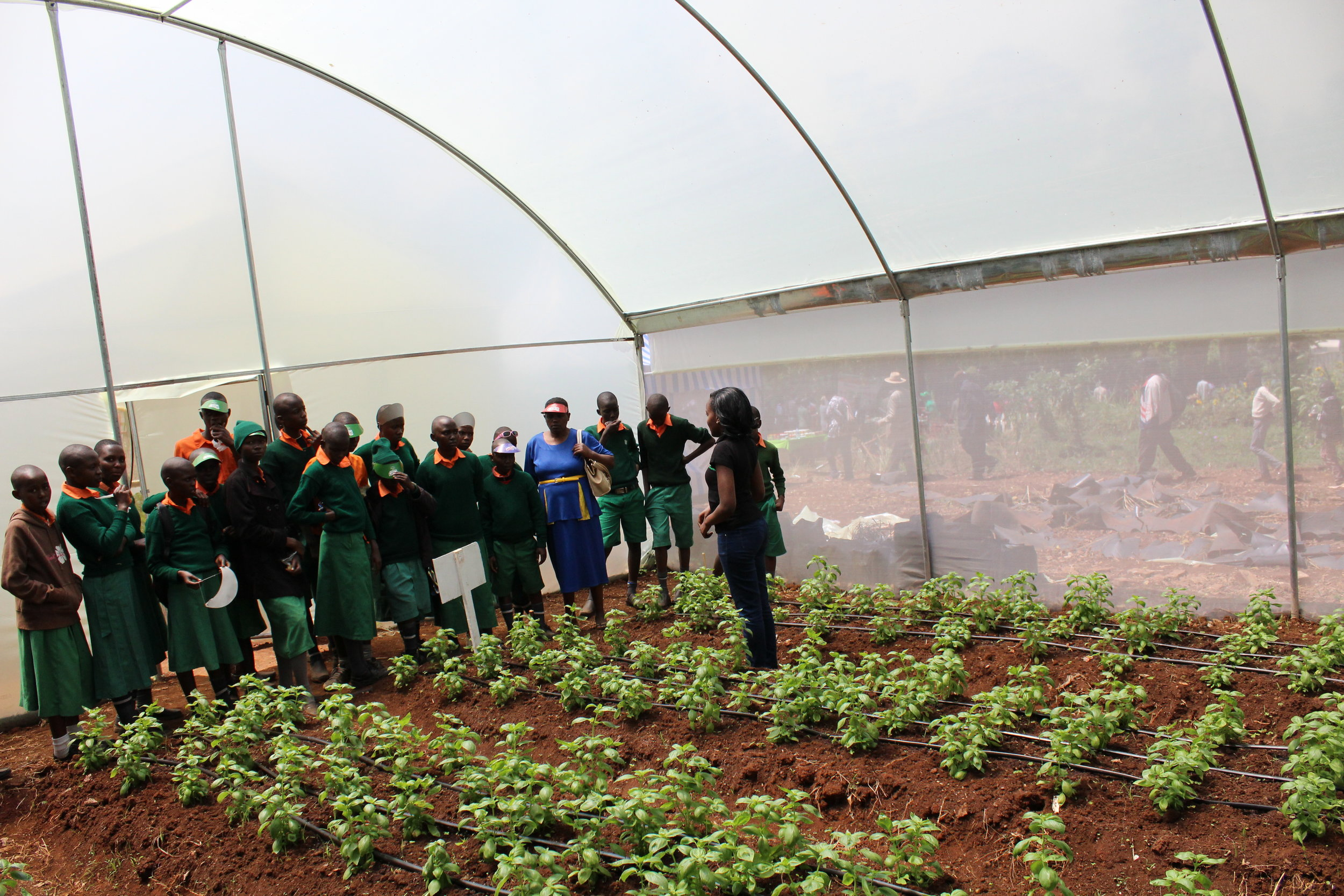 An Illuminum Greenhouses staff member speaks to students about the benefits of using greenhouses at the Nairobi International Trade Fair, 2016