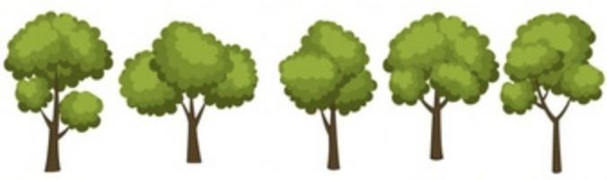 Single line tree graphic.jpg