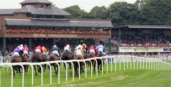 Ripon-Racecourse.jpg