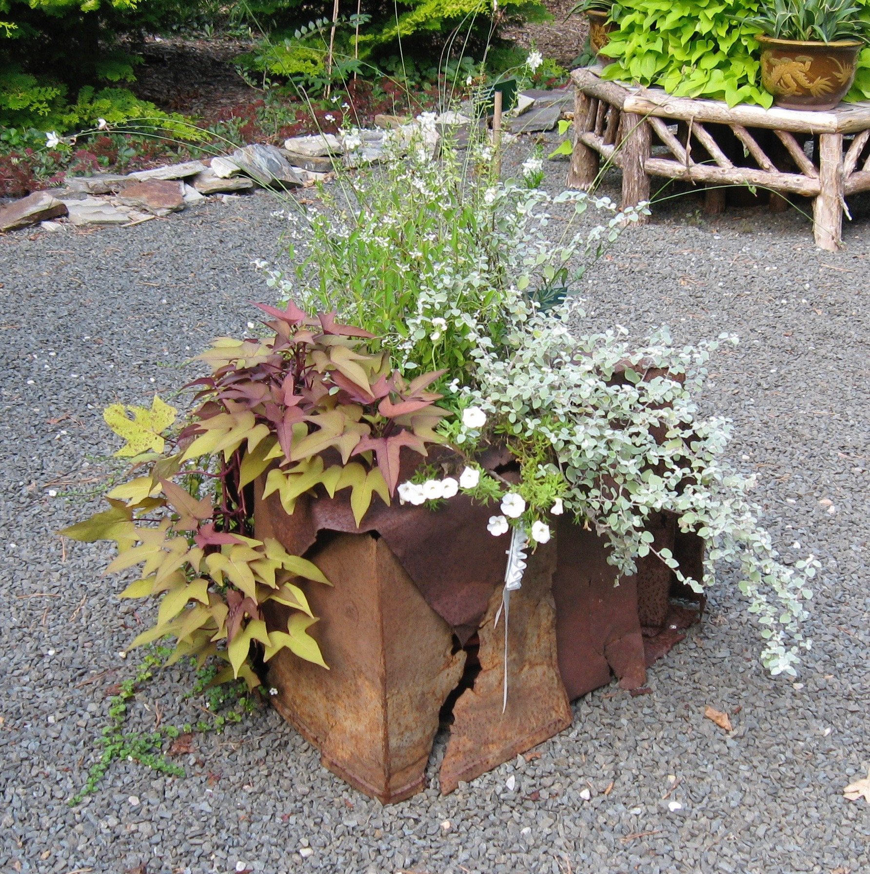 """Reclamation 9.18.2010    """"Planters On/Off the Ground"""" an exhibit at Jack Lenor Larsen's LongHouse Reserve in East Hampton, NY .  M  etal shelving found on the side of the road and used  as the surround for delicate plantings. This was taken 3 months after the initial planting."""