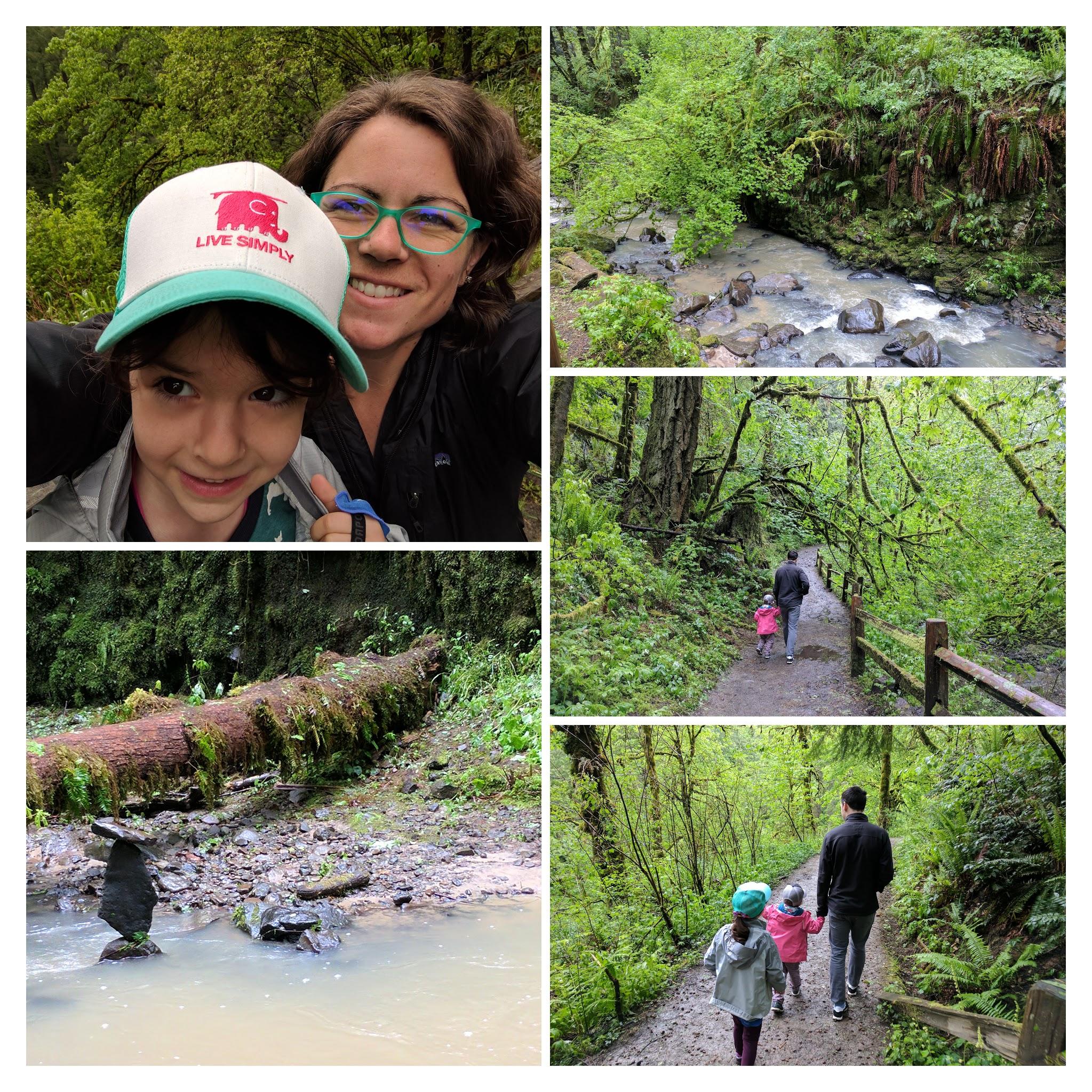 Geebettydesignsforestpark