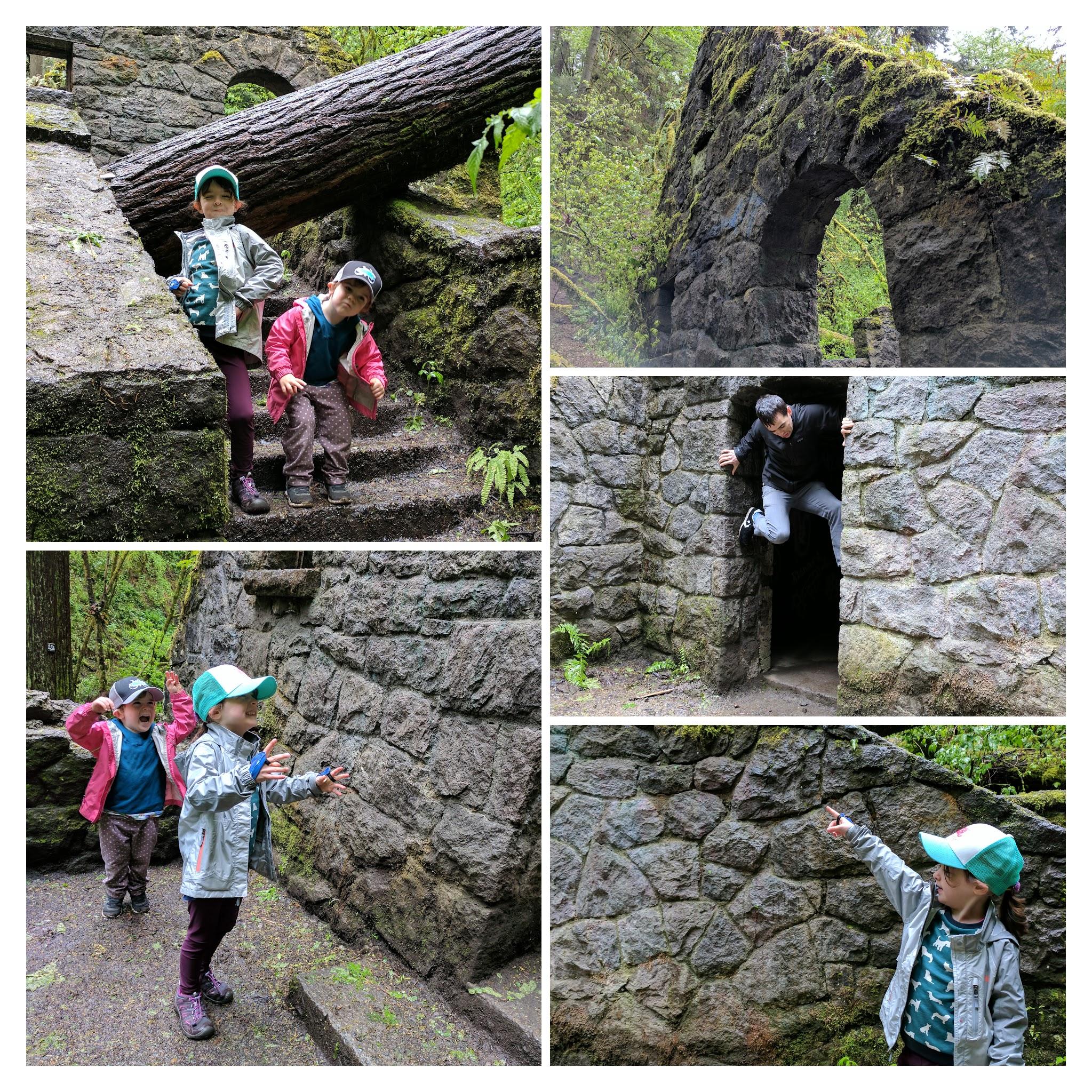 Geebettydesignswitchhouseforestpark