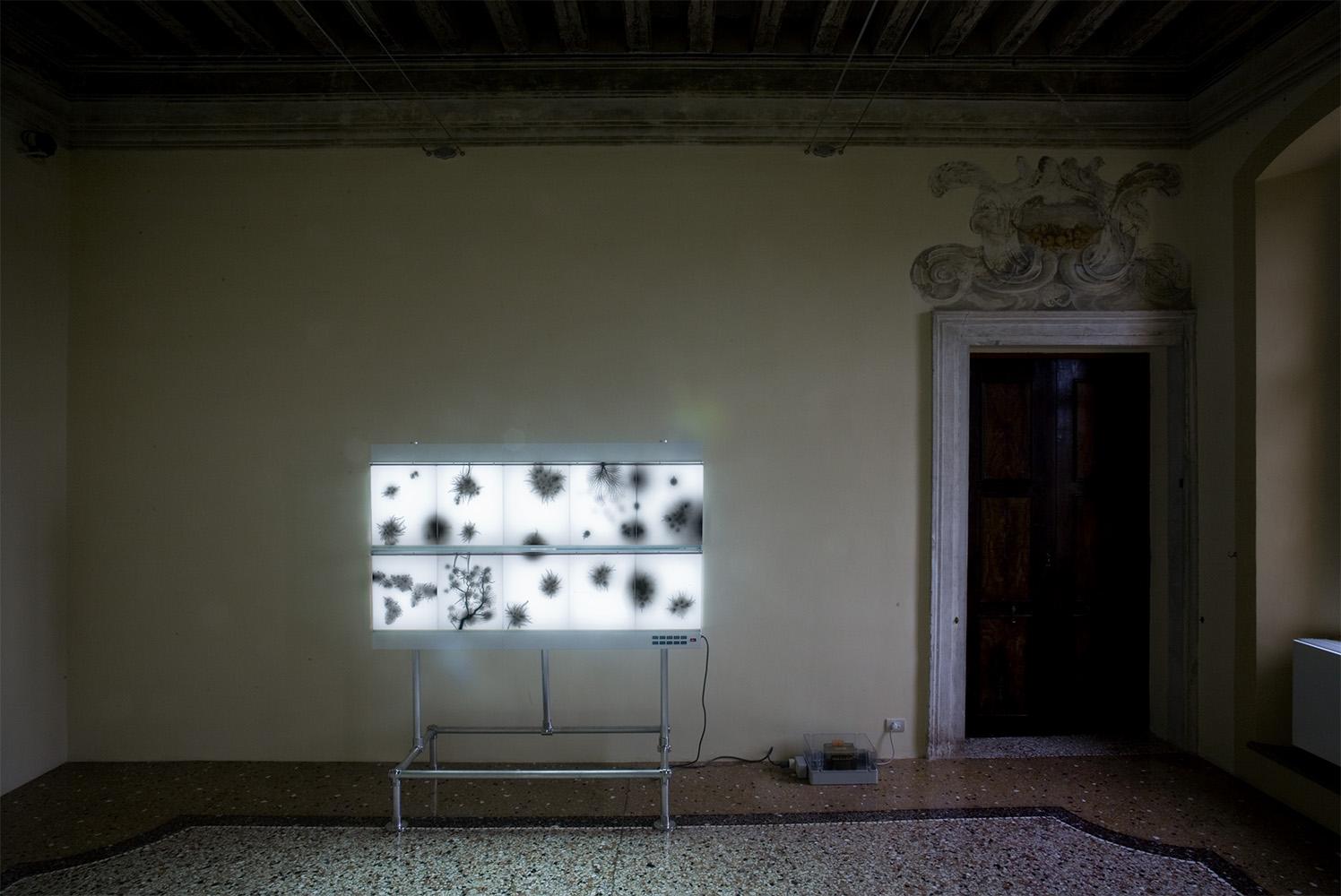 Lightning Fileds Illuminated 001, 2007  (installation view at Villa Manin Centro d'Arte Contemporanea,2007)