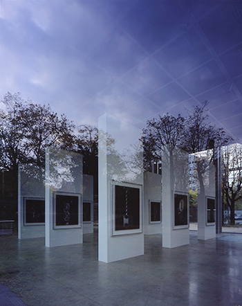 Fondation Cartier pour l'art contemporain, Paris, 2004