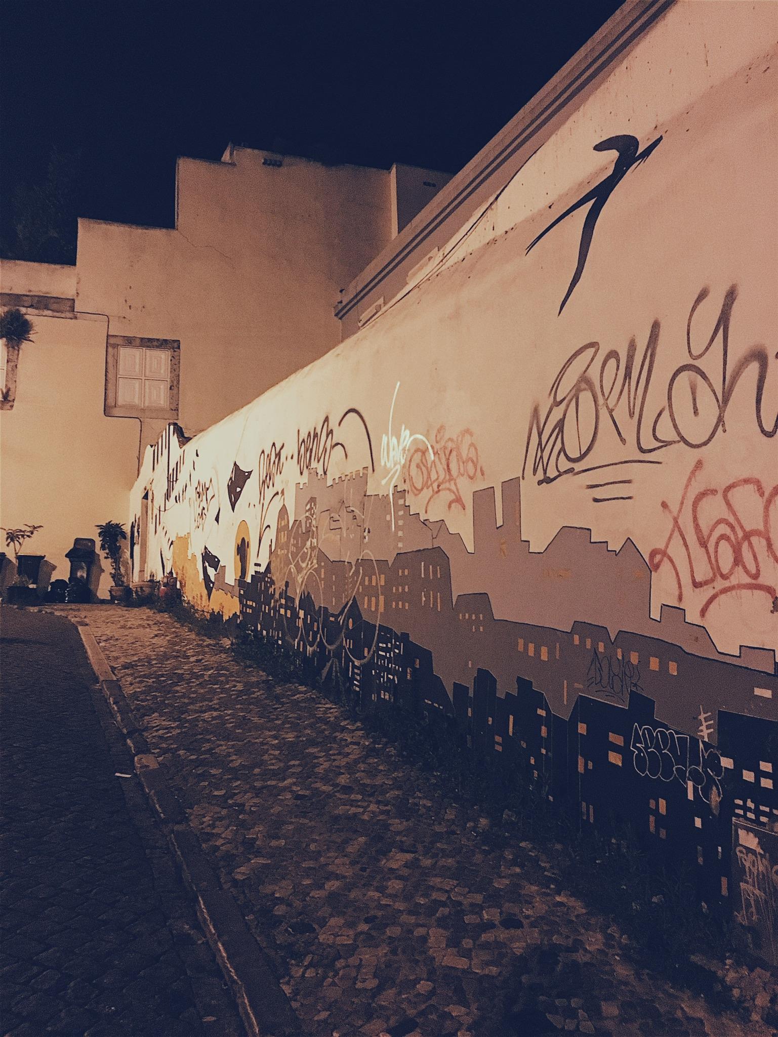 Street art everywhere makes for interesting walks home