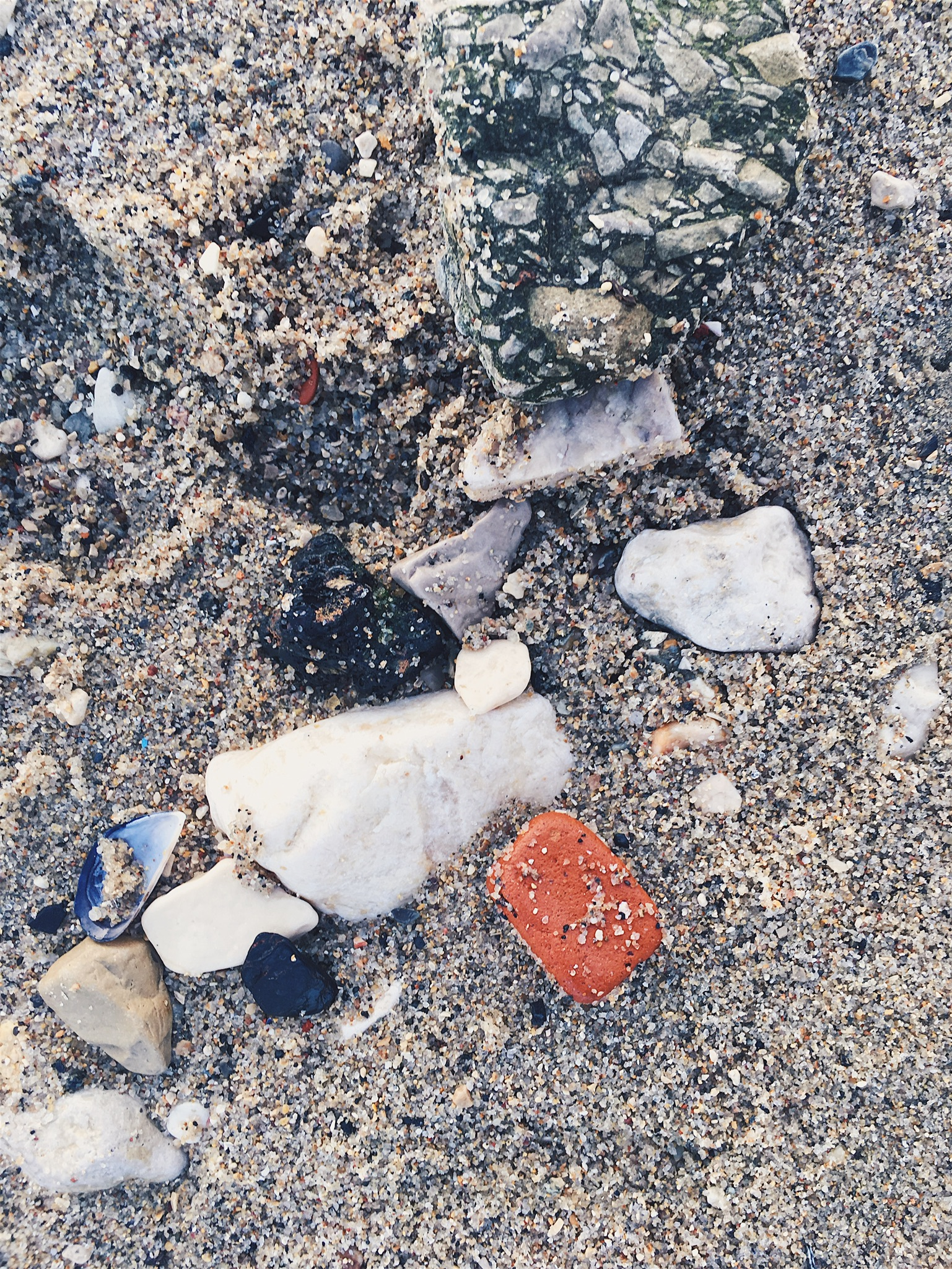 A closeup of treasures in the sand: pieces of brick, tile, shells, cement, and stones; Also a piece of conglomerate