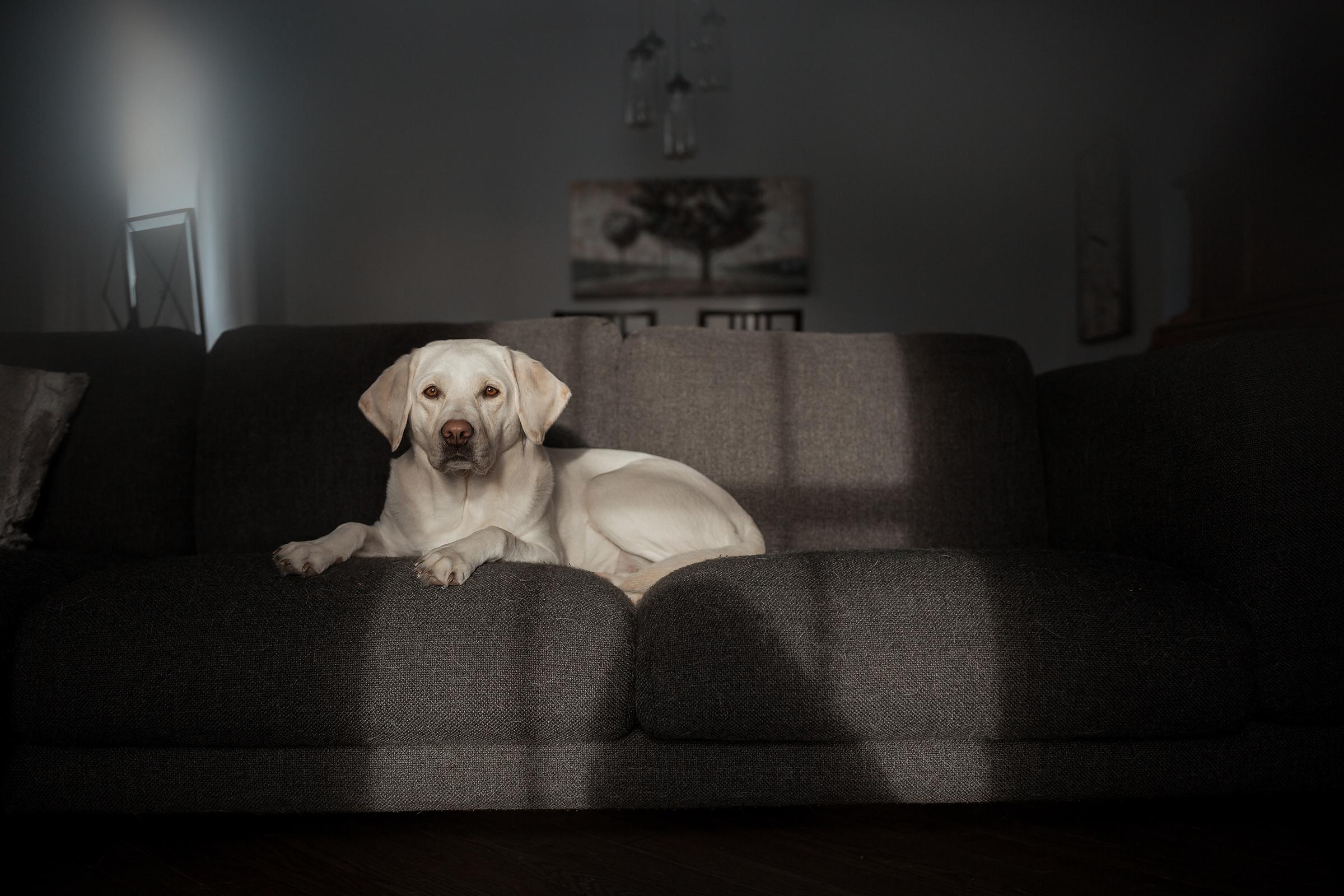 documentary photography Saskatchewan