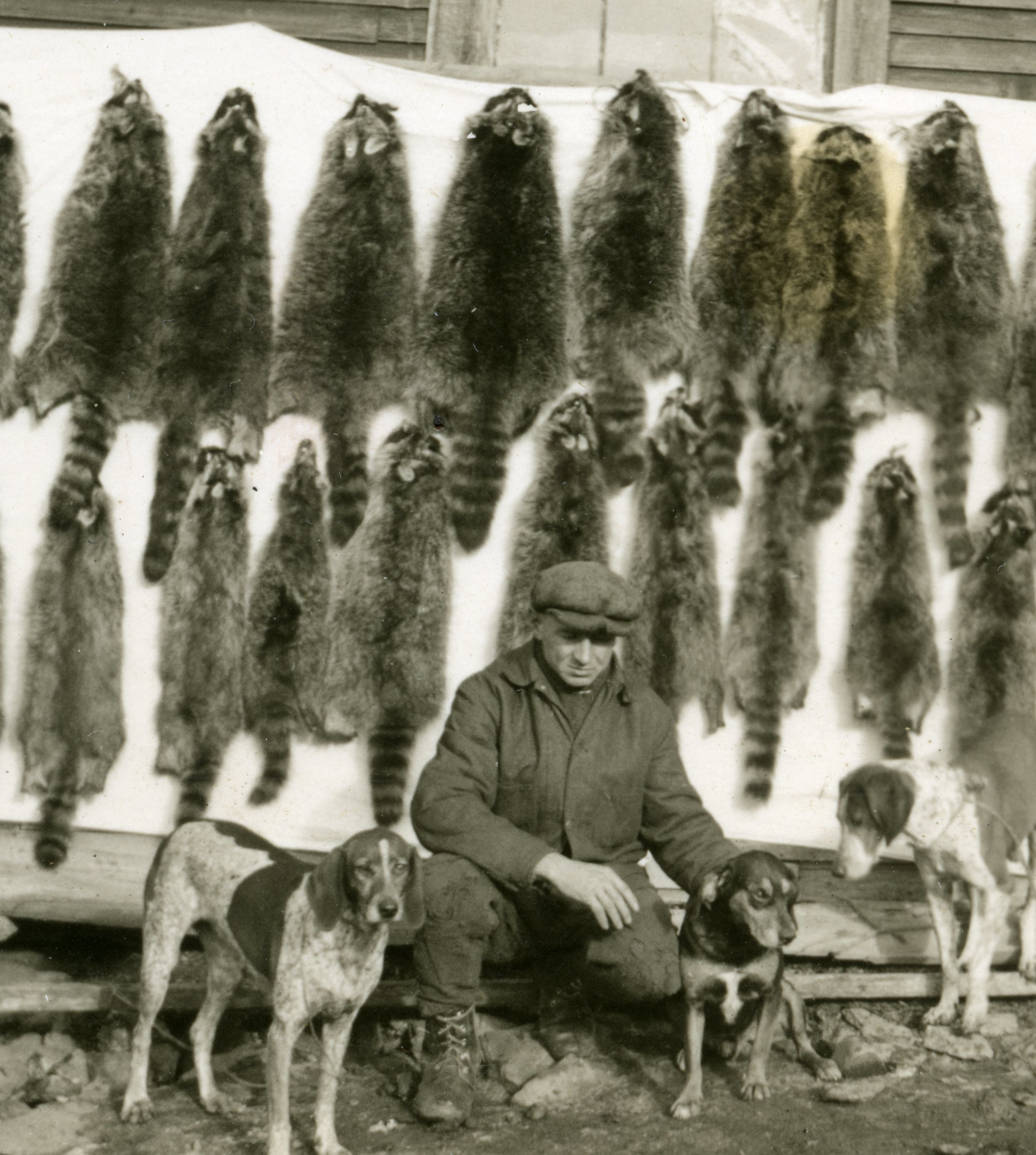 Sy Osmer and his dogs