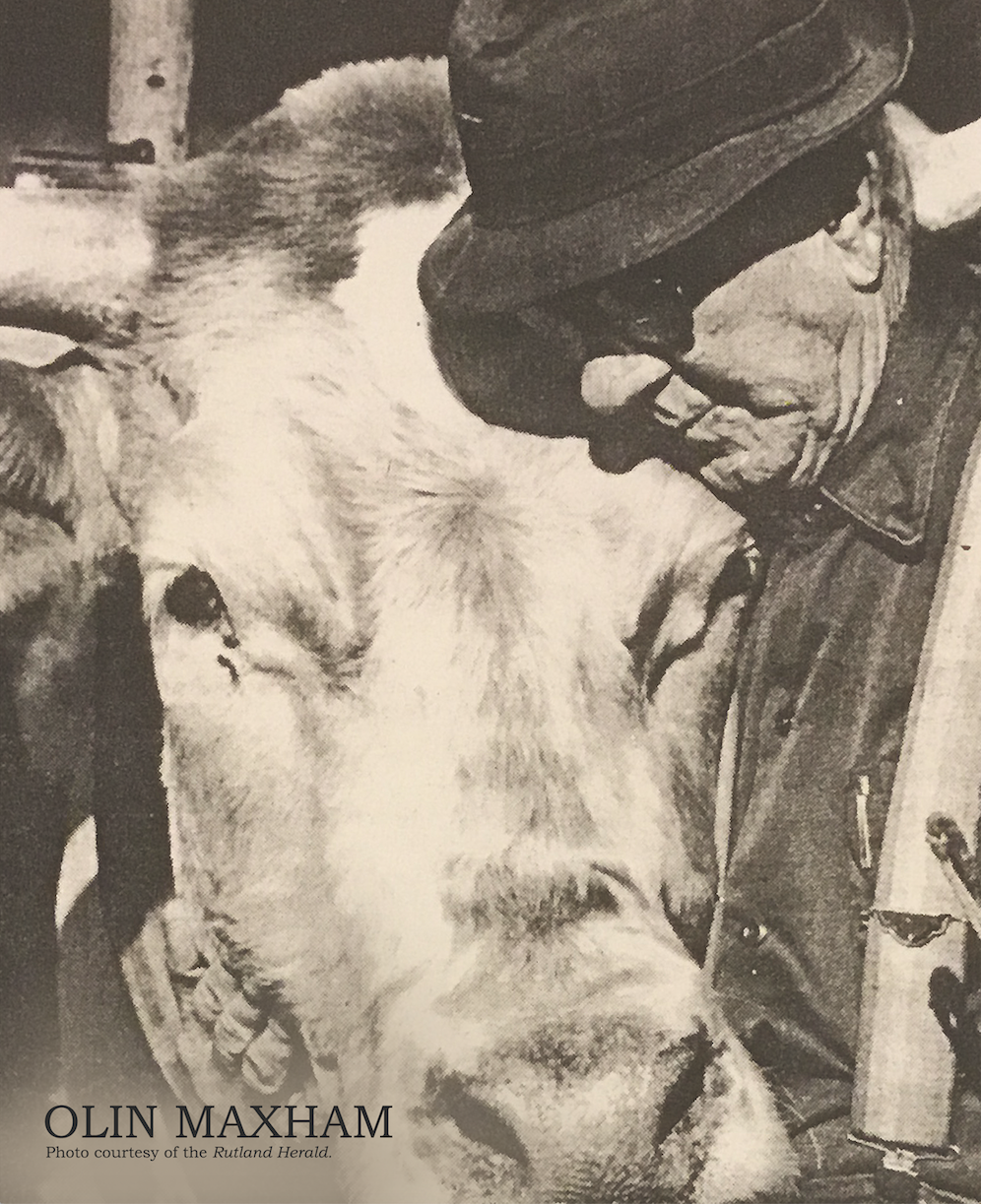 Olin Maxham and one of his oxen