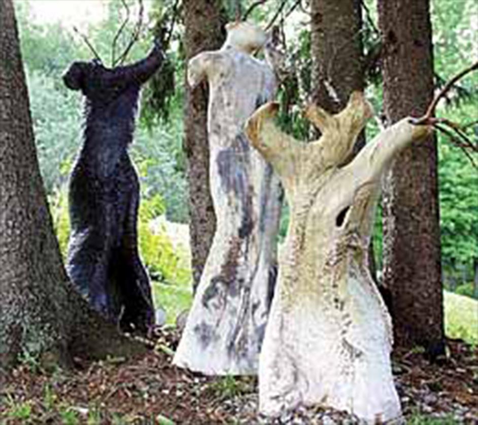 She Trees
