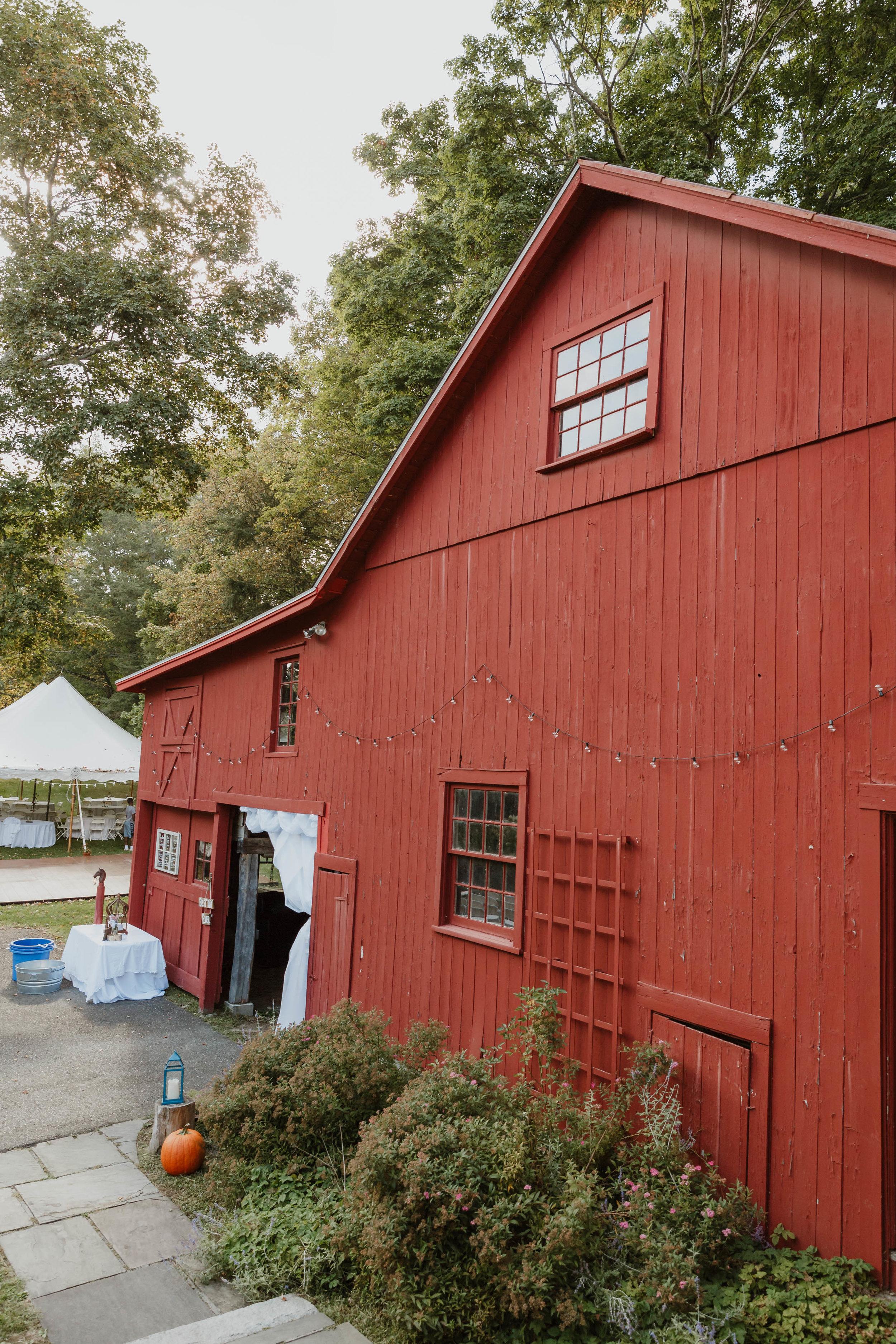 fairfield-county-connecticut-backyard-wedding-photographer--81.jpg