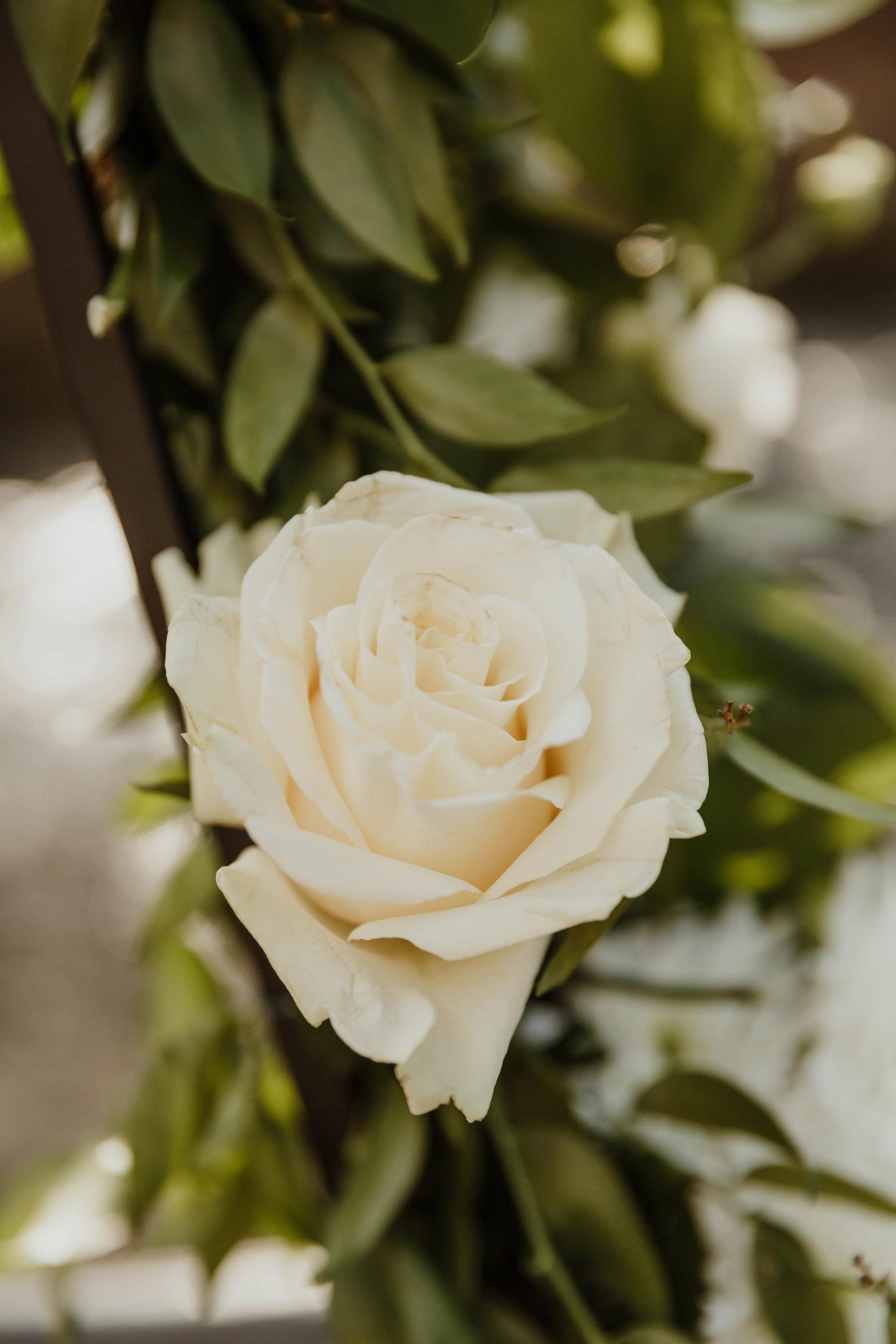 new-york-botanical-garden-wedding-photographer-26.jpg