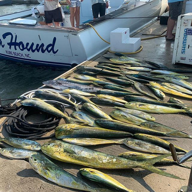 Great dolphin fishing keeps on ! Thank you Ian for stepping up and doing a great job . #takeakidfishing #seakeeper #seahoundfishing #scanglers #tolerscovemarina #ontherip
