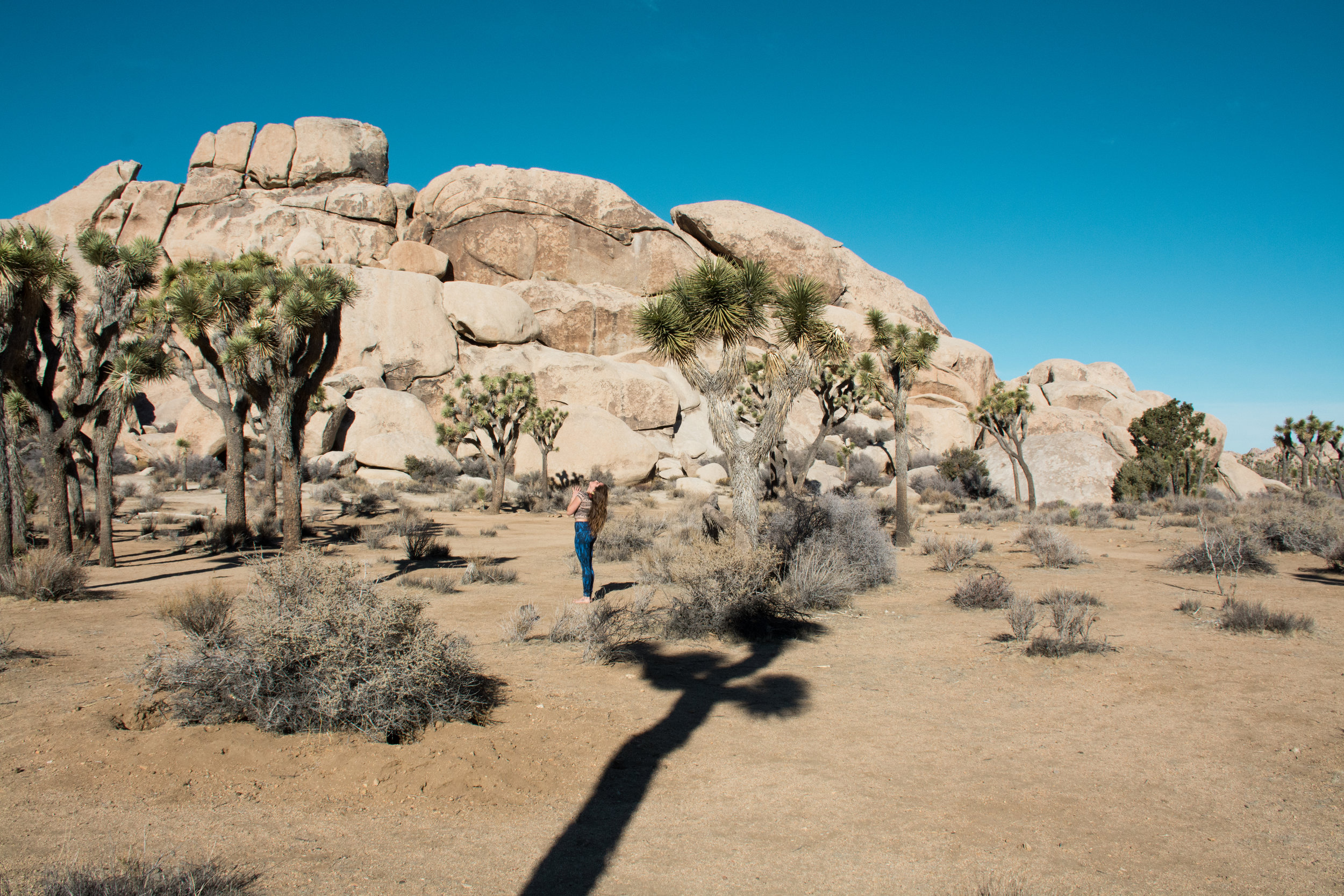 We'll adventure into Joshua Tree National Park to climb on rocks and have a picnic. Can you say  epic photoshoot ?