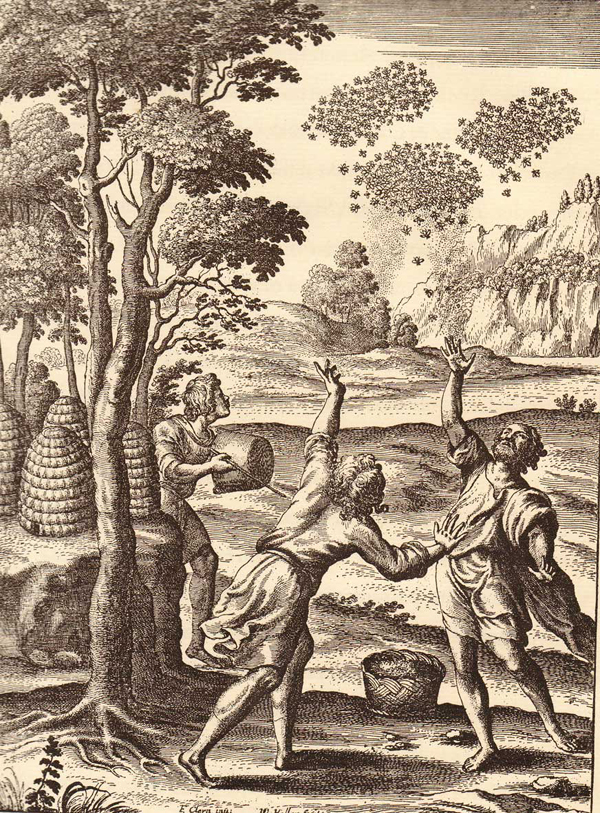 Plate from Georgics Book IV