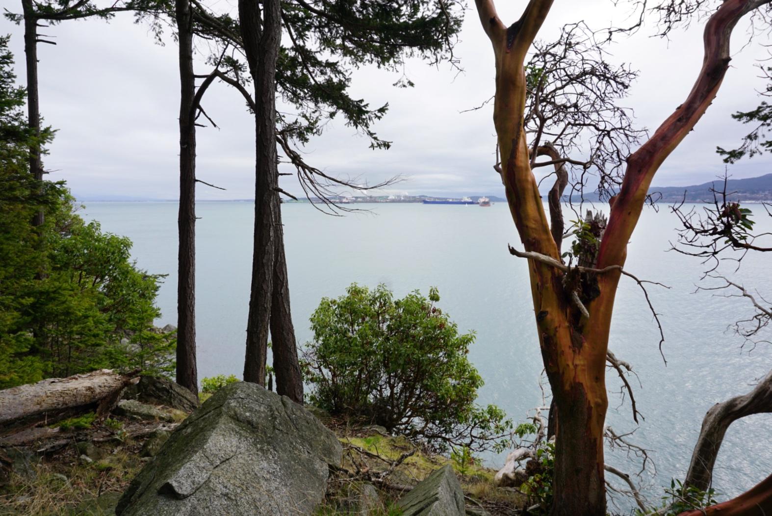 Cypress Way Guemes Island