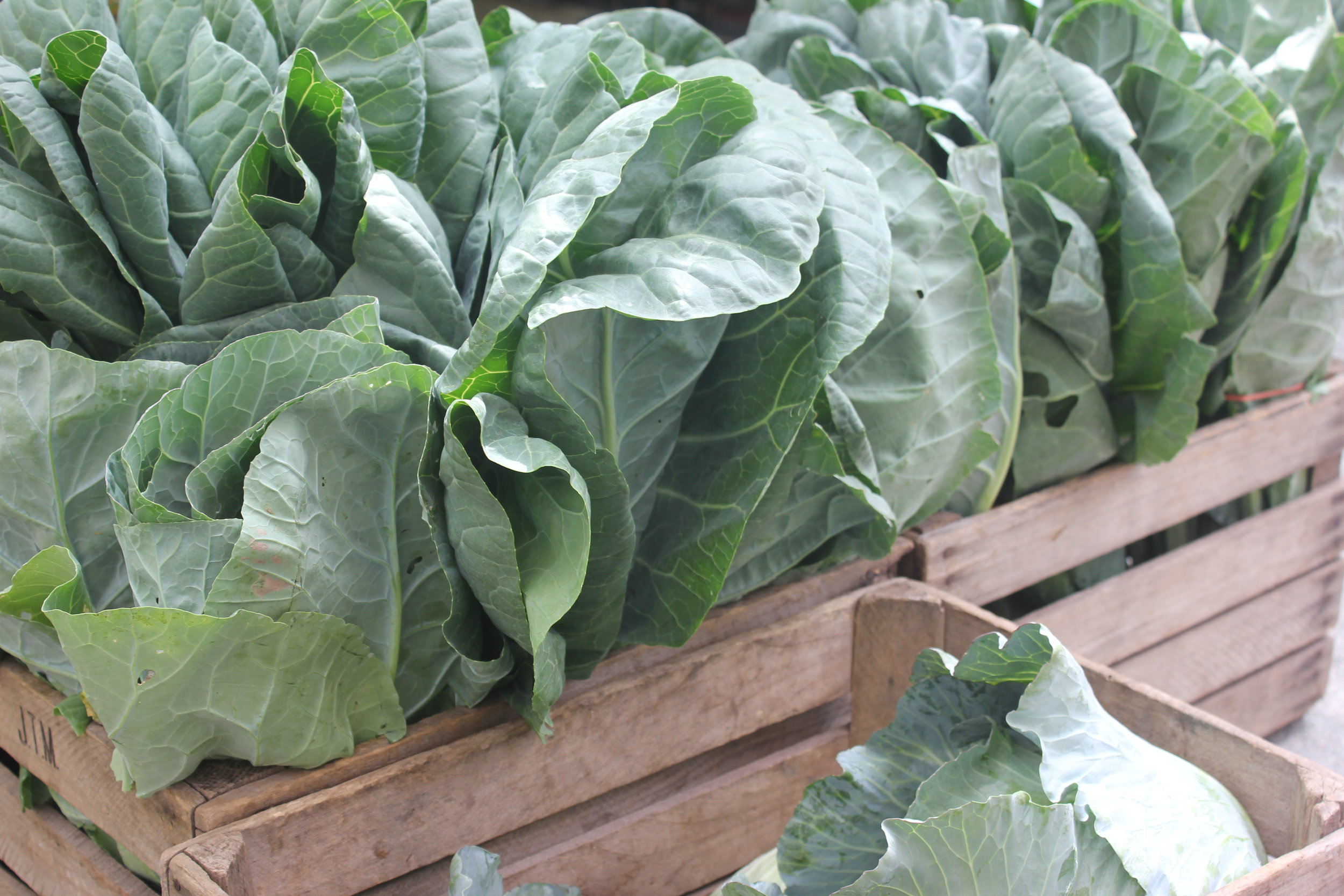 collard greens nutrition and cooking tip.JPG
