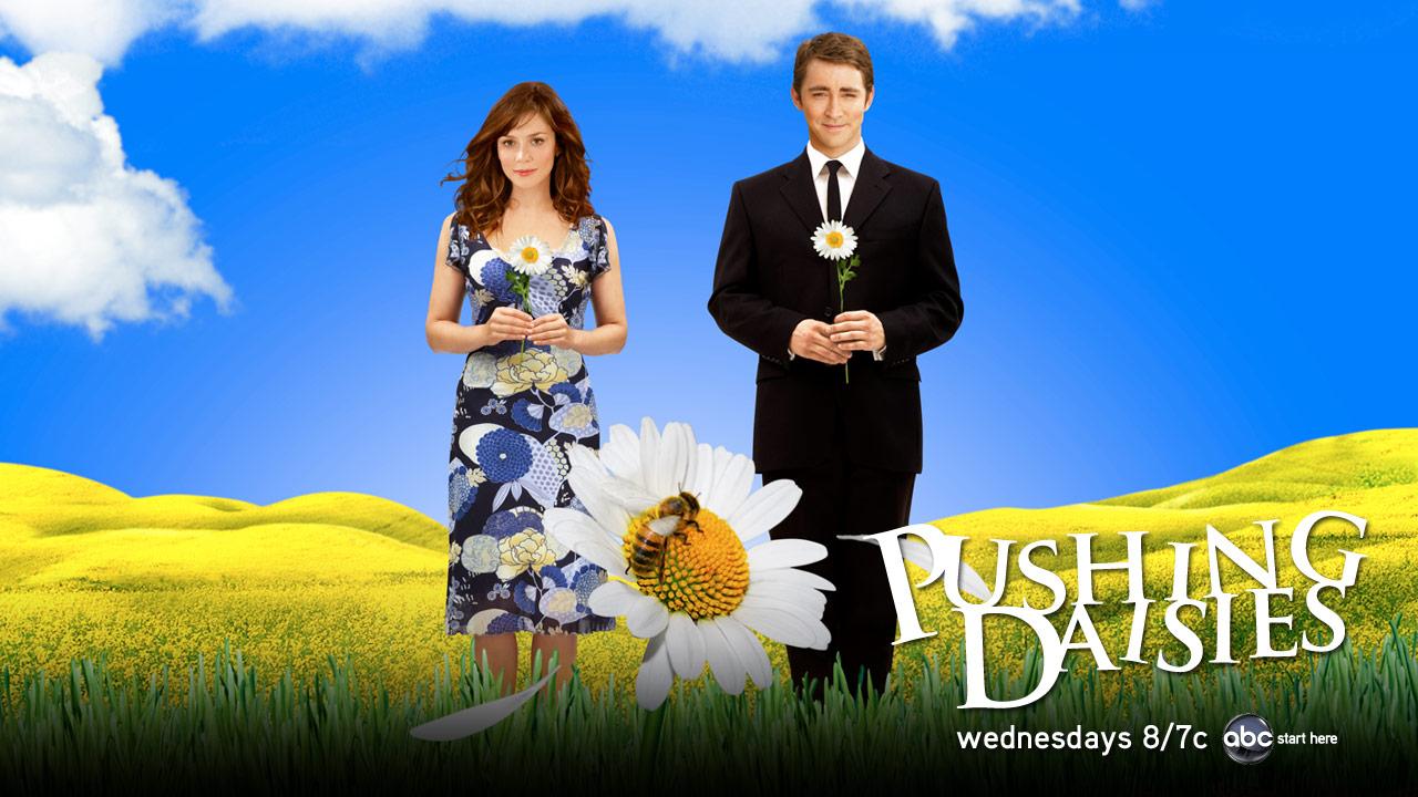 Pushing-Daisies-TV-show-on-ABC-season-2-canceled-no-season-3.jpg