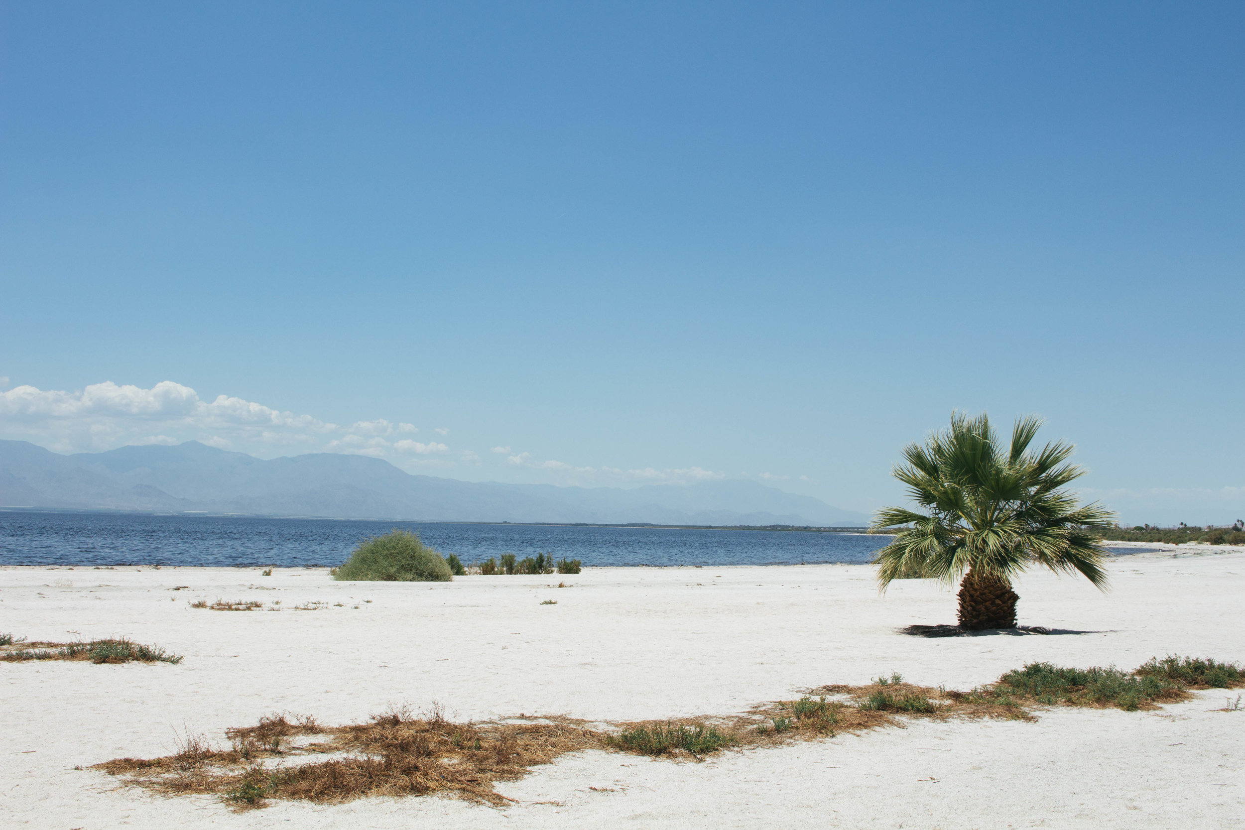Salton Sea, California via Worthy Pause